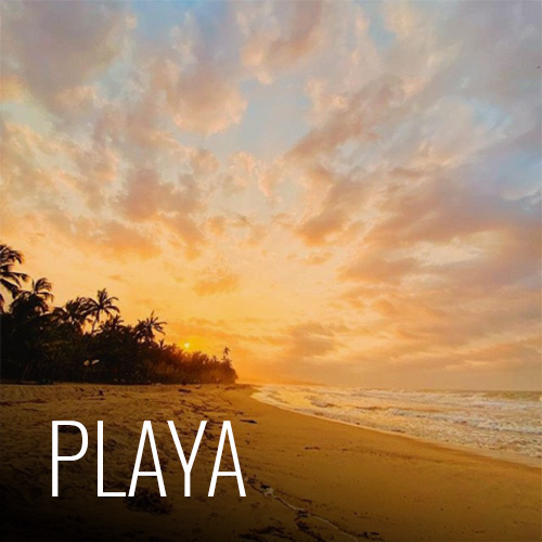 Somos afortunados de estar ubicados justo en frente de kilometros de playa, que por la poca cantidad de lugares habitados en ella, es prácticamente privada